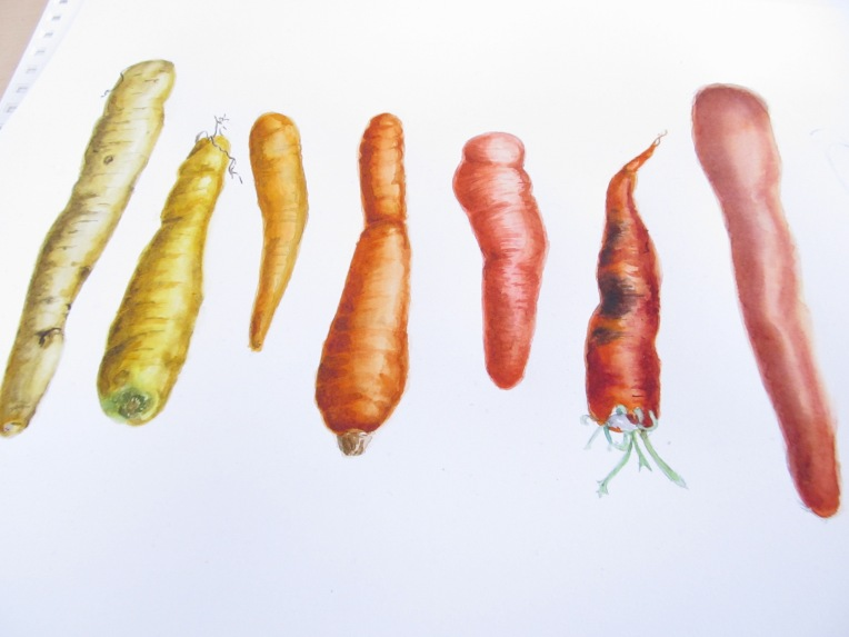 Carrots that look even better than real carrots