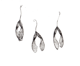 Box Elder Seed Pods