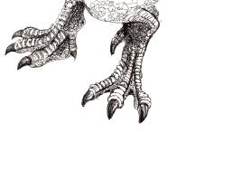 Spinosaurus Feet